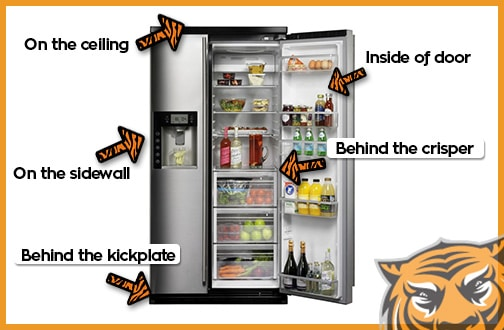 Refrigerator Model Finder
