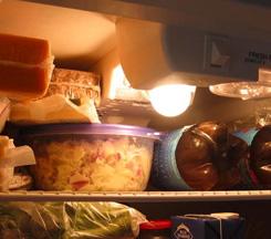fridge fixes