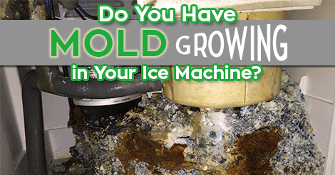 Do You Have Mold Growing in Your Ice Maker