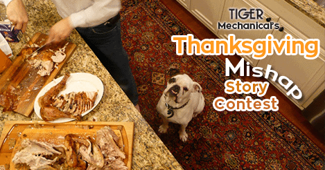 Thanksgiving Mishap Story
