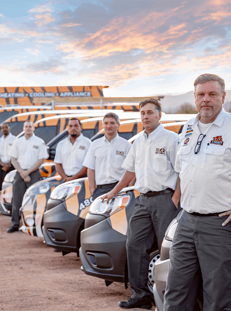 tiger mechanical team